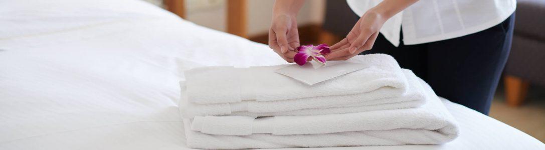 Control de plagas en hoteles