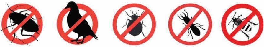 control de plagas de insectos