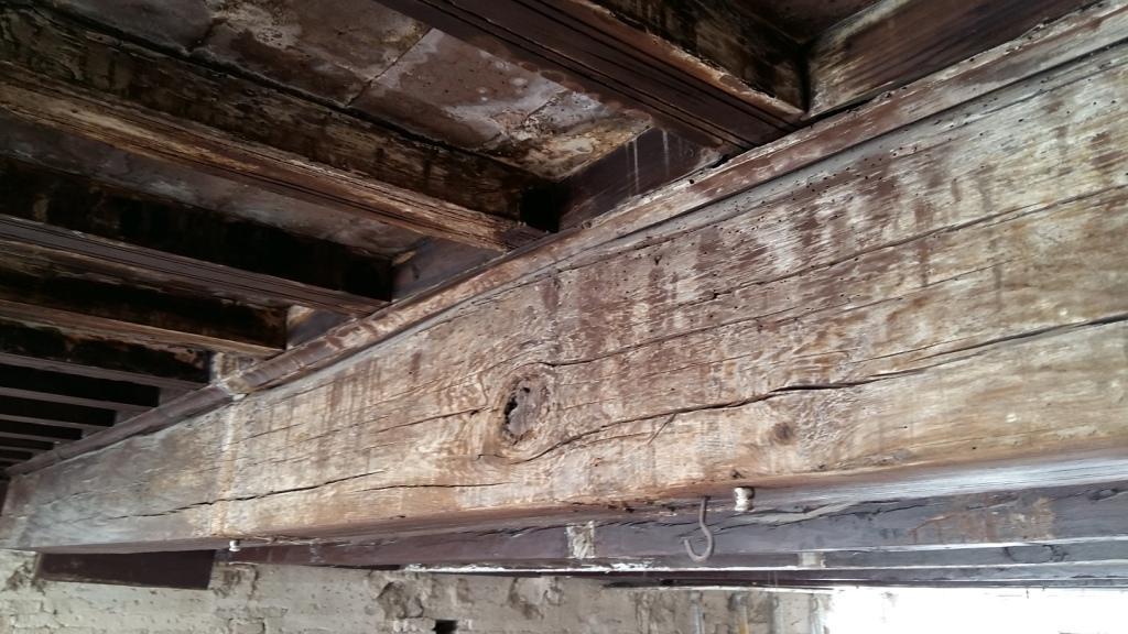 análisis de patologías en estructuras de madera